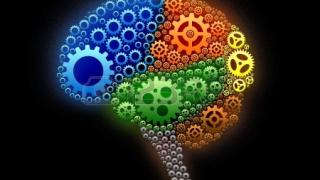 Neuromarketing Nutricional 1 de 2