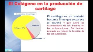 Importancia Colageno 2 – Profesor Julio