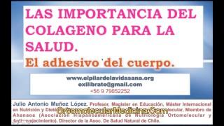 Importancia Colageno – Profesor Julio