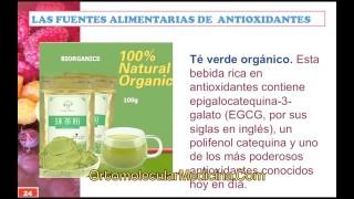La clave de los Antioxidantes 2 de 2